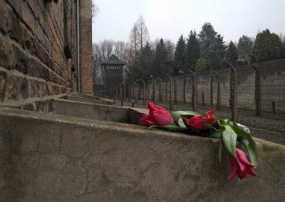 Il Giorno della Memoria, l'impegno a mantenere sempre vivi i nostri valori